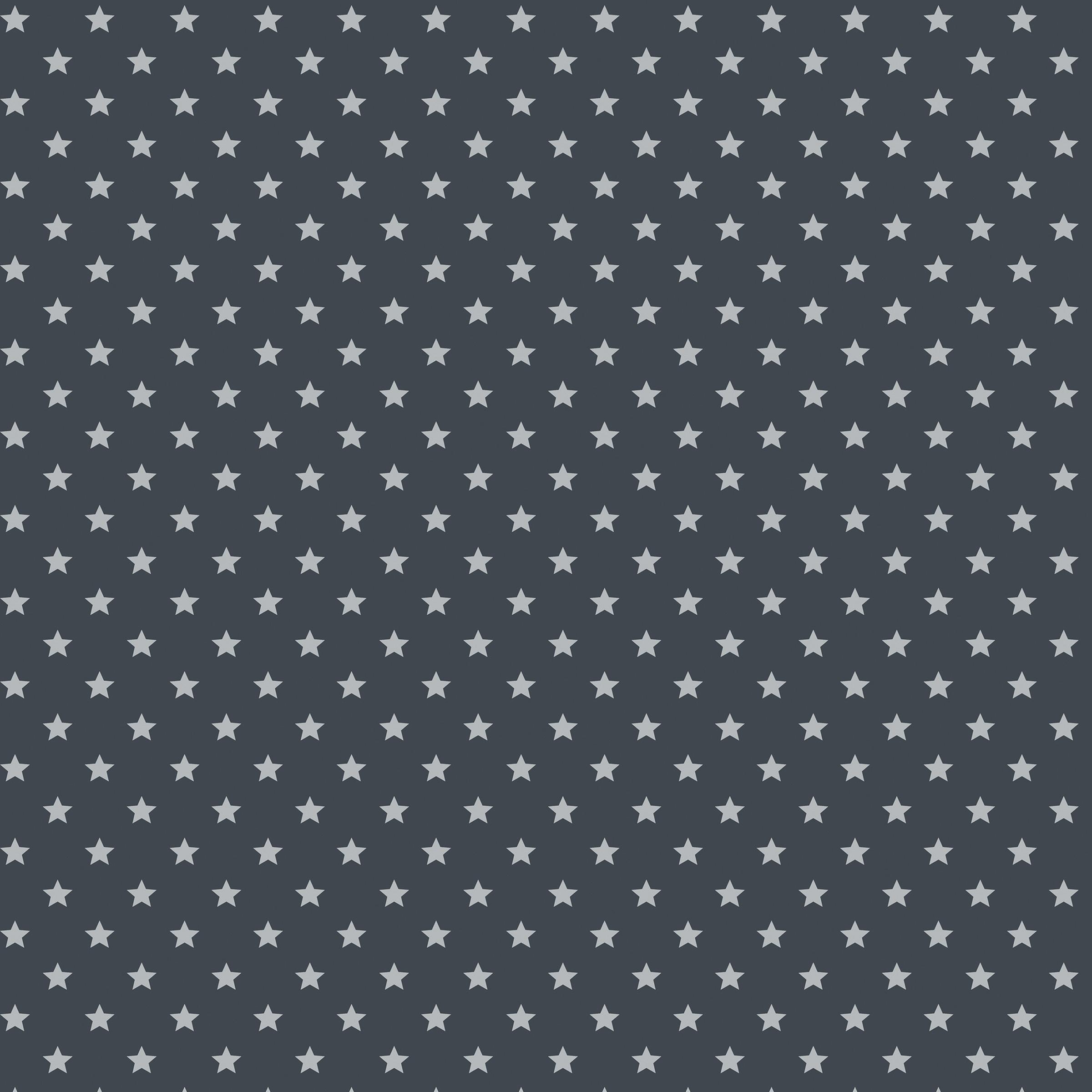 dc fix decoratie folie grijs ster 346 0653 2 m x 45 cm raamfolie plakfolie raamdecoratie. Black Bedroom Furniture Sets. Home Design Ideas