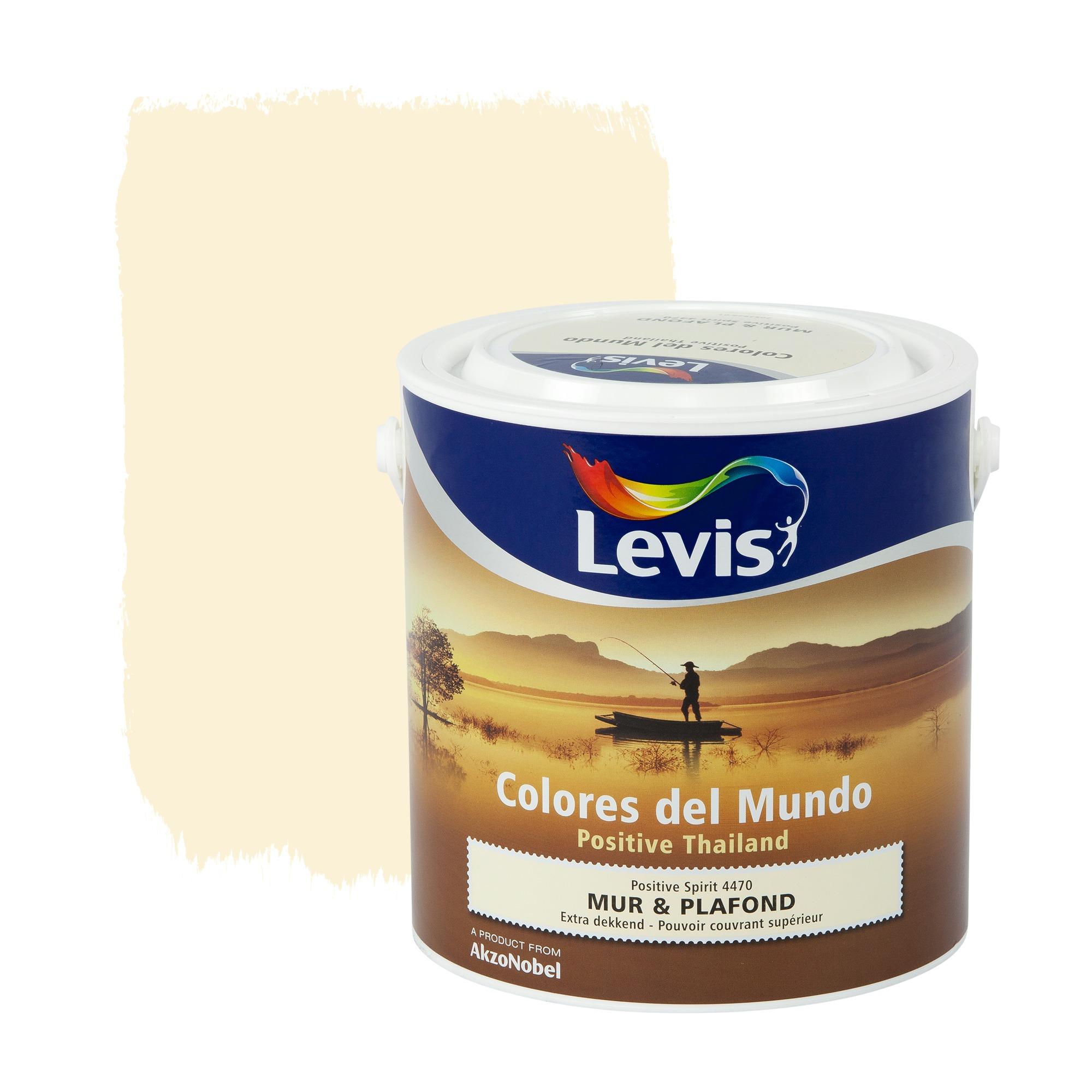 Peinture mur plafond colores del mundo levis mat for Peinture mat plafond