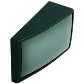 Dodehoekspiegel 48x29 mm